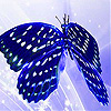 Blue butterfly slide puzzle