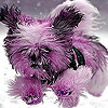 Cute puppy on the snow puzzle