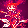 Pink flame roses puzzle