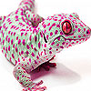 Pink spotted lizard puzzle